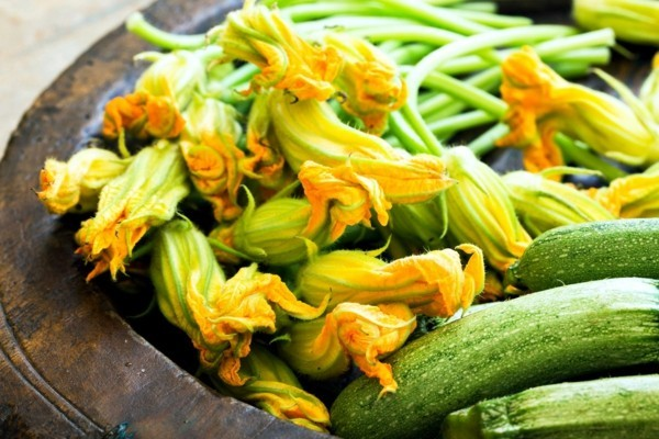 essbare blüten zucchini kürbisse