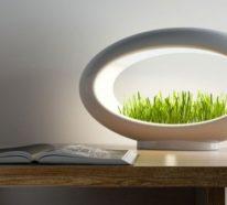 Grasslamp – Hi-Tech Designer-Lampe zum Pflanzen von Gemüse zu Hause
