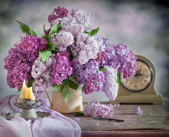 romantische tischdeko mit flieder