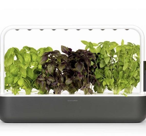 toller kleinder Garten Innovationen