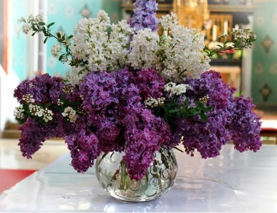 wunderschöner flieder strauß in der vase