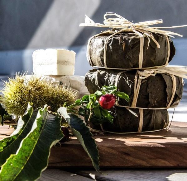 Alpen Feinkost aus Südtirol probieren und ein Stück Natur nach Hause holen alpenweit käse in weinblätter zum genießen