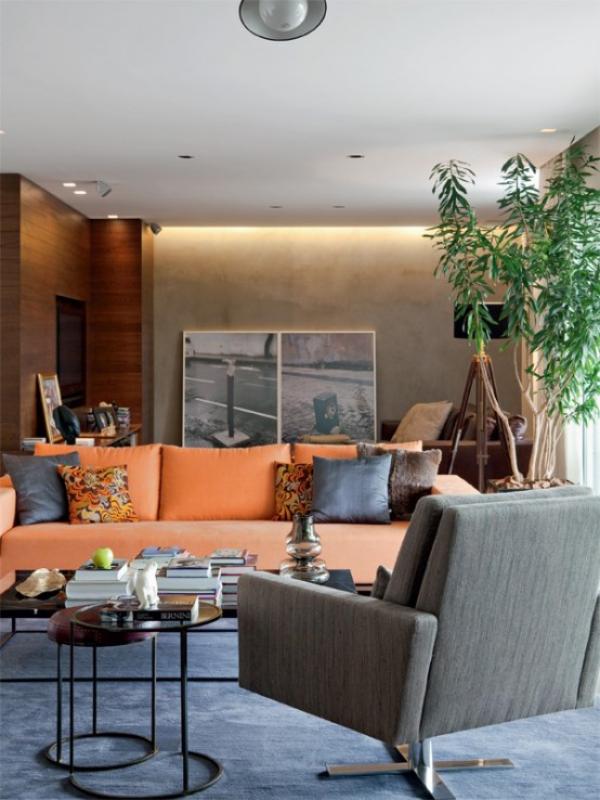 Maskulin und elegant modernes Wohnzimmer hell einladend pfirsichfarbene Couch