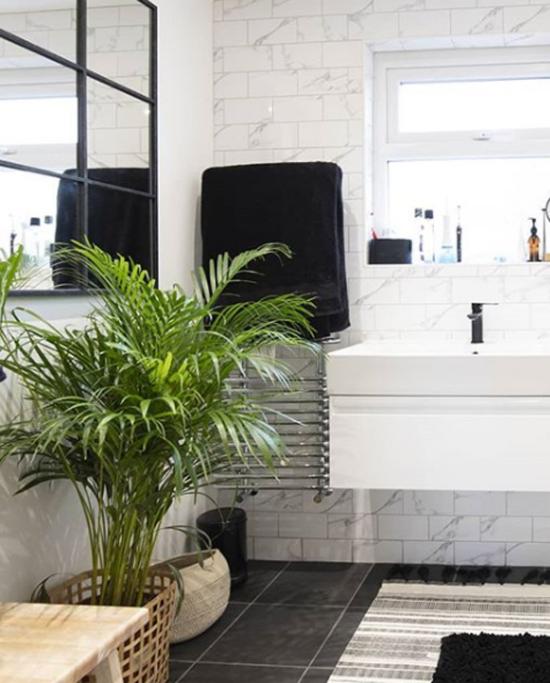 Pflanzen fürs Bad Bergpalme grüne Note bringen ins moderne Badezimmer