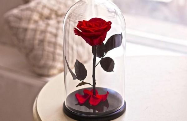 Rose im Glas auf einem Beistelltisch zieht alle Blicke an
