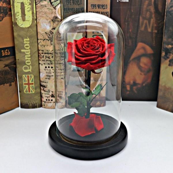 Rose im Glas das Highlight der ganzen Raumdekoration