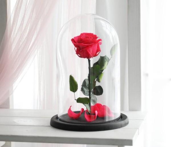 Rose im Glas der zarteste Blickfang im Raum