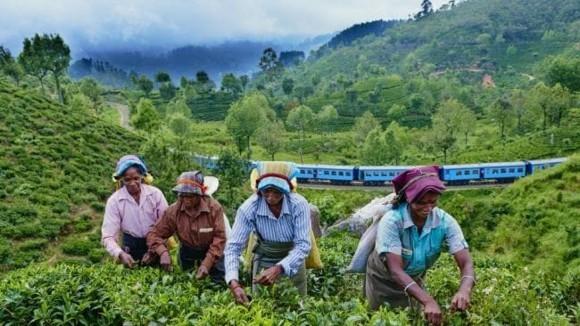 Sri Lanka Reisetipps Haputale