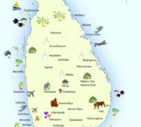 Sri Lanka Reisetipps für eine traumhafte Reise ins grüne Inselparadies