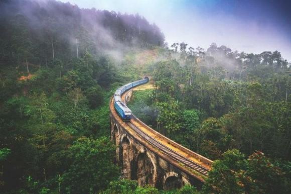 Sri Lanka Reisetipps Zugfahrt grüne Natur
