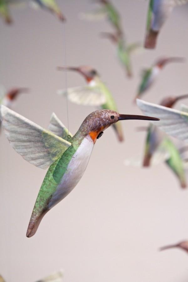 projekt drohne mit kolibri