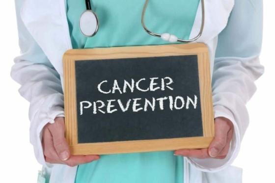 schwarzer Sesam gesunde Vorteile Sesamsamen Krebsvorbeugung