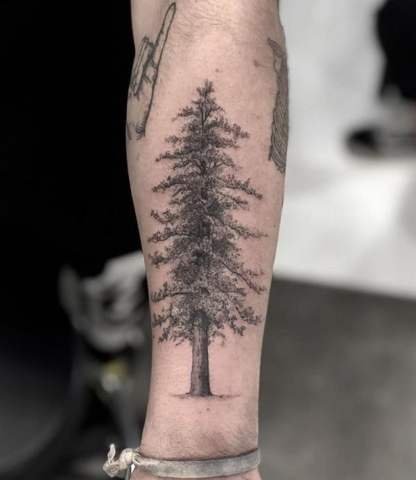 toller baum tattoo ideen