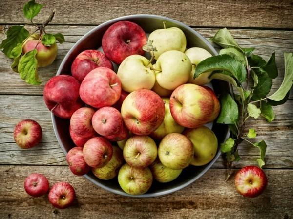 Apfelmus selber machen Äpfel aus dem eigenen Garten