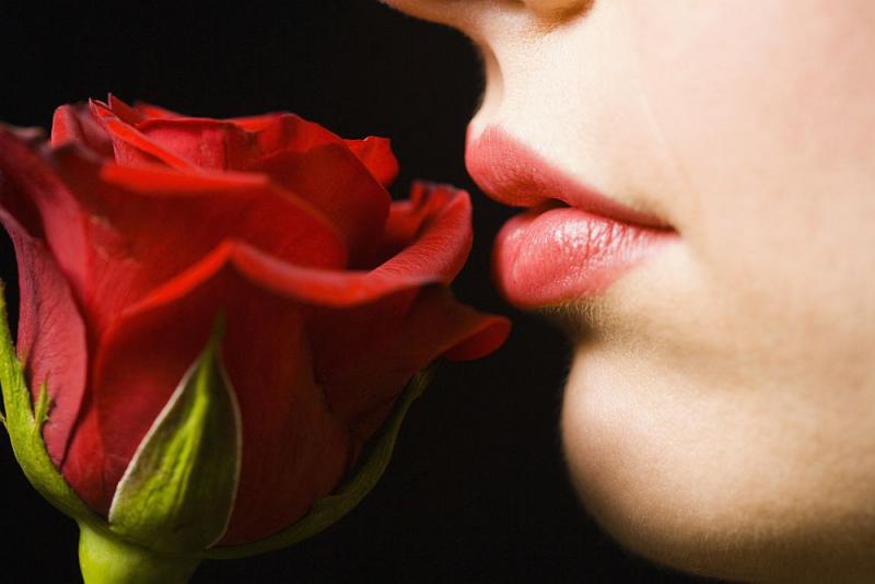 Blumensprache rote Rosen Symbol der Liebe sagen mehr als tausend Worte