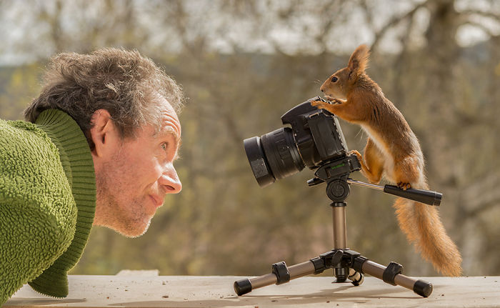 Eichhörnchen fotografieren Geert Weggen auf der anderen Seite der Kamera