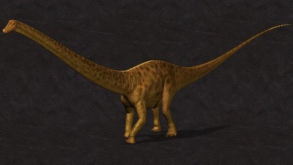 Einzigartiges Diplodocus Skelett mit Haut wird versteigert vermutetes aussehen des dino