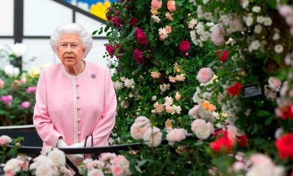 Gartengestaltung die queen auf der Messe