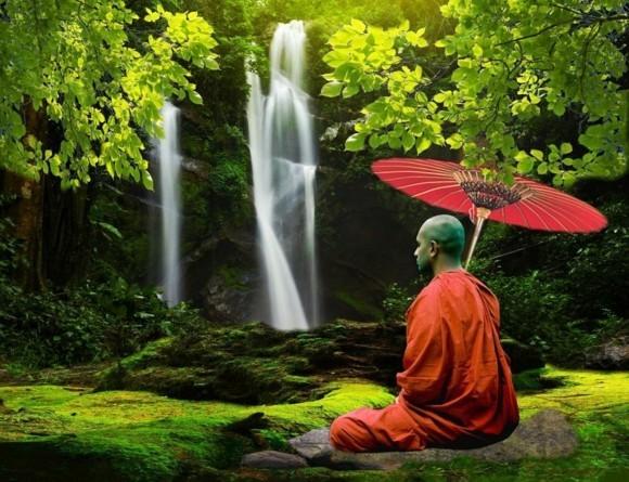 Ginkgo Baum buddhistischer Monch Ginkgo Biloba Bedeutung