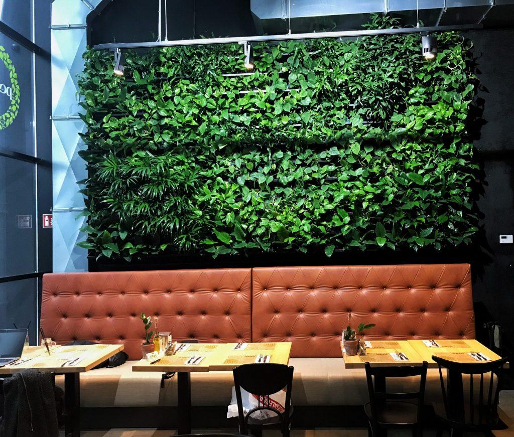 Grüne Wandgestaltung Grüne Pflanzen hinter einem Sofa