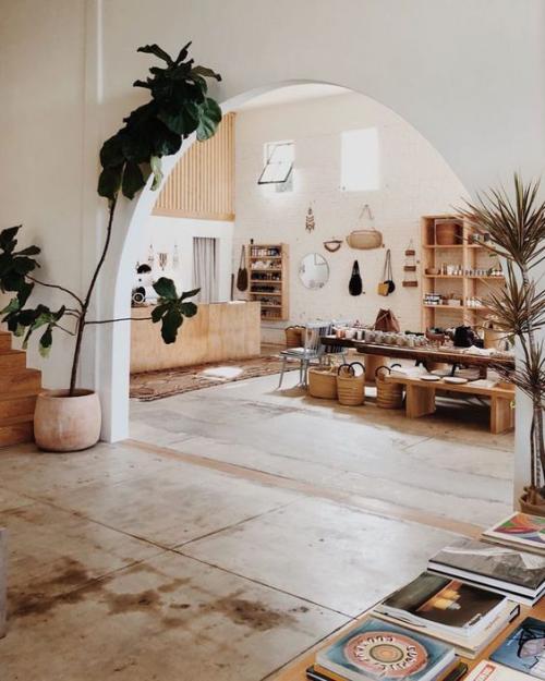 Halbkreisfenster gewölbte Zimmerdurchgänge offenes Raumkonzept viel Holz grüne Pflanzen