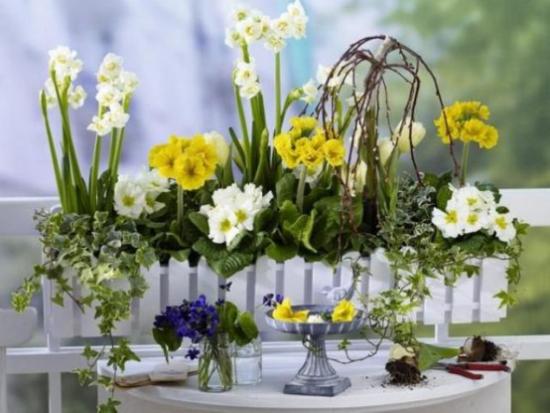Sommerblumen Deko Ideen Blumenkasten zarte Blüten Blumen im Glas frische Note