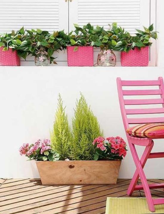 Sommerblumen Deko Ideen Primeln in Kästen schmücken Balkon Outdoor-Bereich