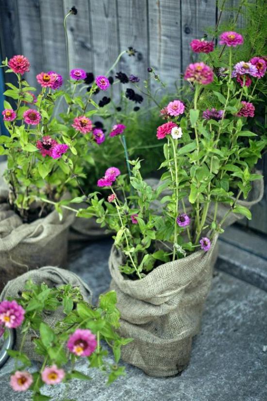 Sommerblumen Deko Ideen Ringelblumen in Töpfen und Leinensäcken