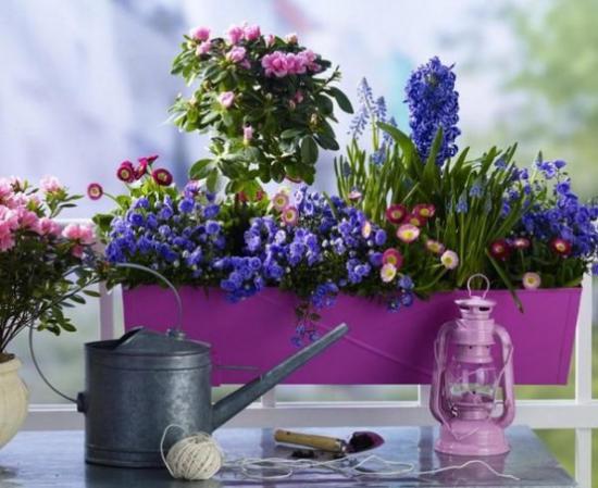 Sommerblumen Deko Ideen den Balkon mit bunten Blumen dekorieren