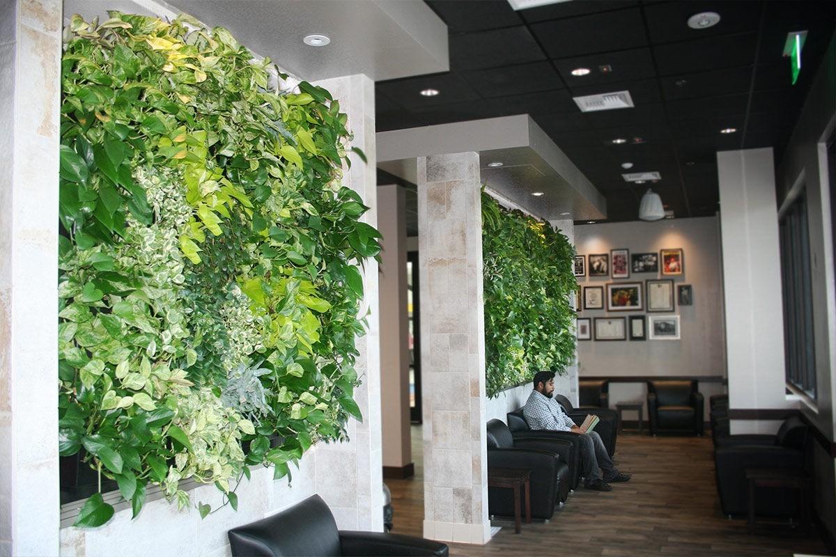 Wartezimmer mit grünen Pflanzen Grüne Wandgestaltung