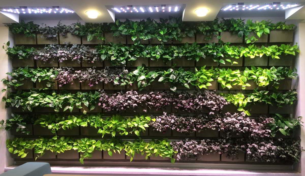 mehrere tollen Blätter Grüne Wandgestaltung