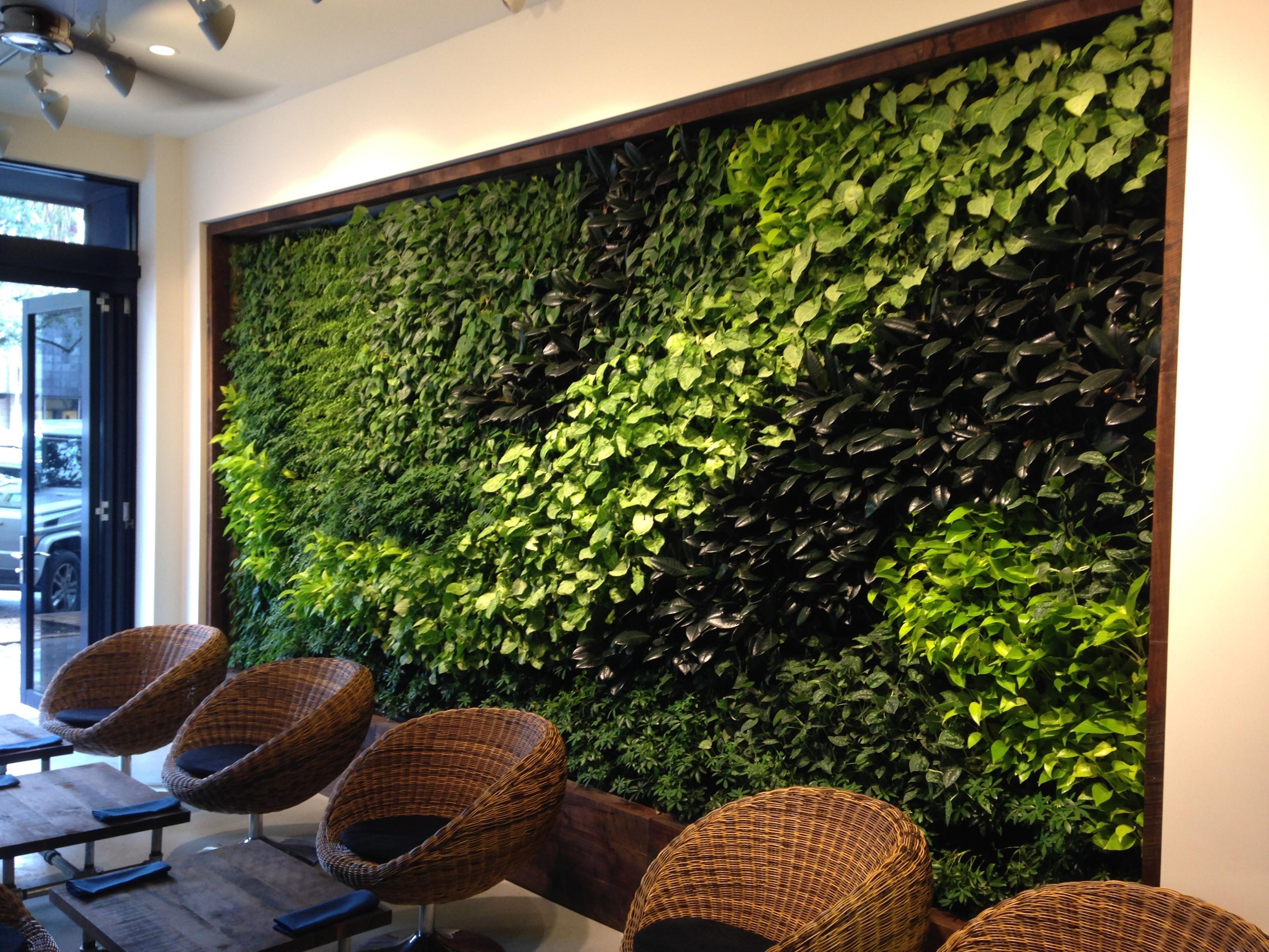 sehr tolle Idee mit Pflanzen Grüne Wandgestaltung