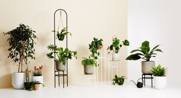 ständer mit pflanzen - tolle wohnideen