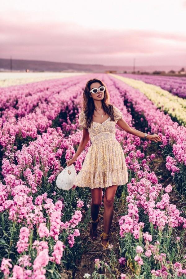 Damenkleider - tolle für schöne Bilder