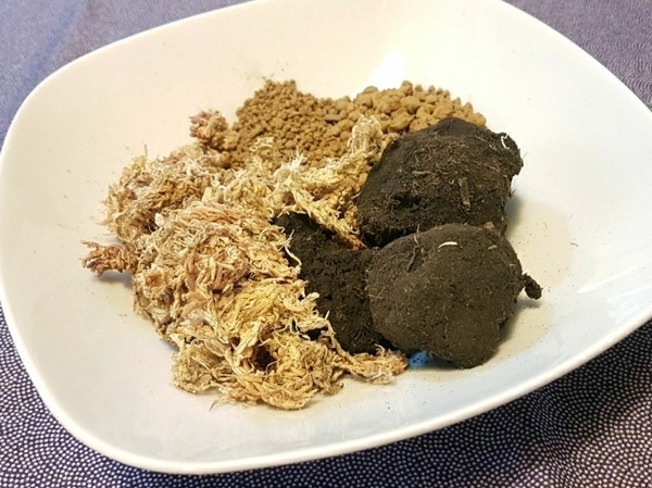Kokedama selber machen Mooskugel Bodenbestandteile