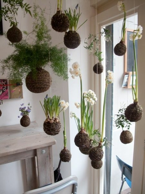 Kokedama selber machen japanische Gartenkunst hängende Pflanzen