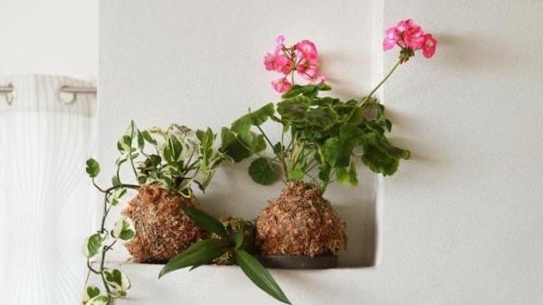 Kokedama selber machen japanische Gartenkunst kleine Ecken dekorieren