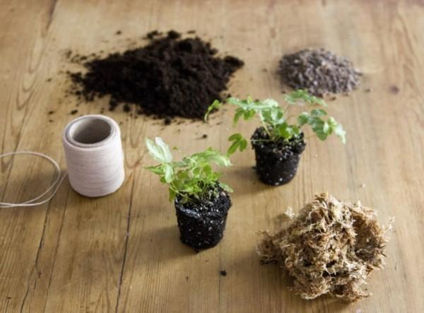 Kokedama selber machen japanische Mooskugel Materialien Erde