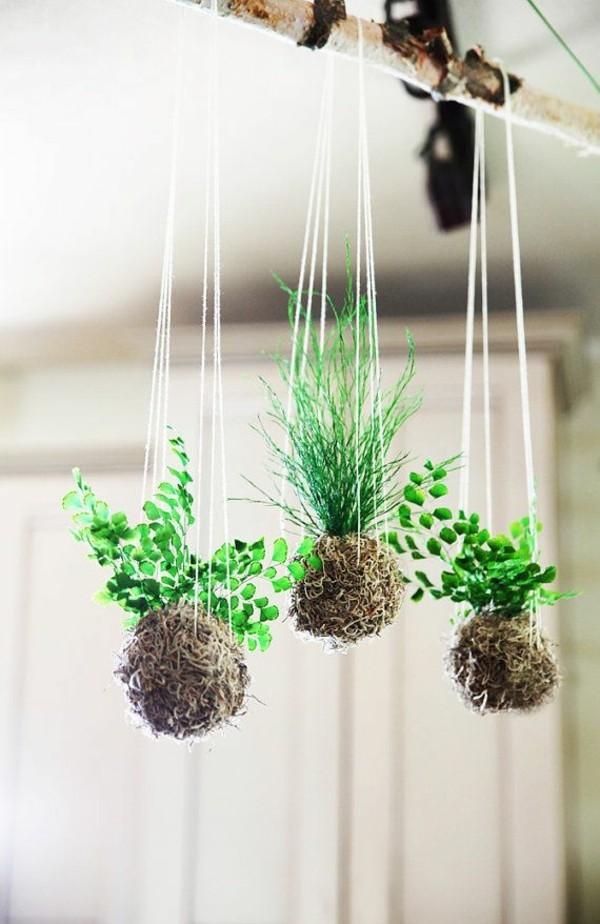 Kokedama selber machen japanische Mooskugel hängende Pflanzen
