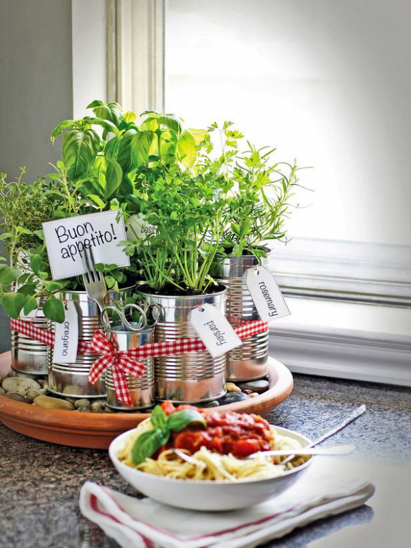 Kräuter zuhause anbauen pflegen auf einem Ständer auf dem Esstisch in der Küche richtiger Blickfang