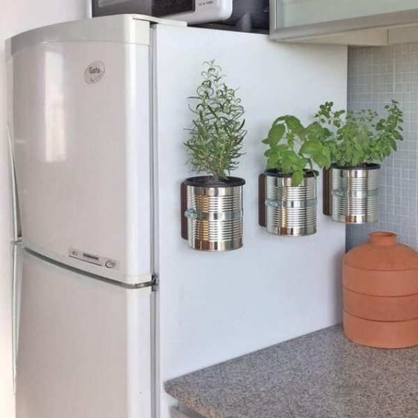 Kräuter zuhause anbauen pflegen in Metallbehältern am Kühlschrank fixiert