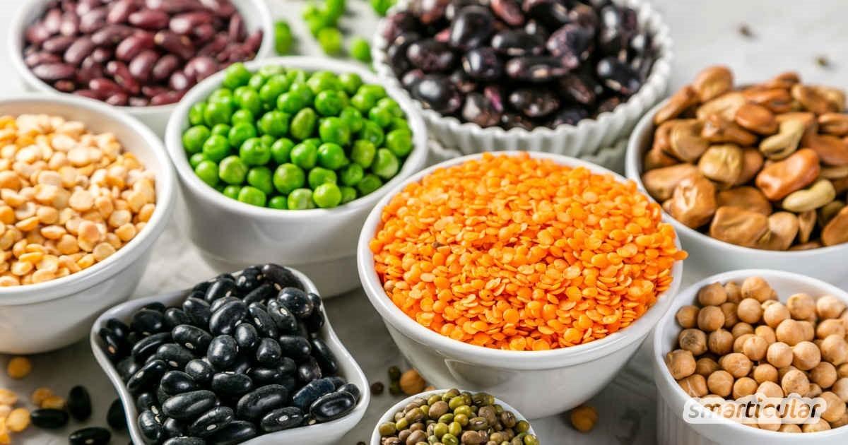 Magnesiumreiche Lebensmittel verschiedene Hülsenfrüchte Bohnen Erbse Kichererbse sind gesund