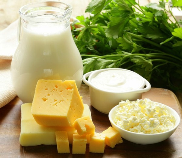 Probiotische Lebensmittel gereifte Käsesorten gesunde Darmflora