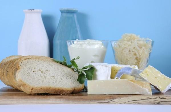 Probiotische Lebensmittel gesunde Ernährung Milchprodukte