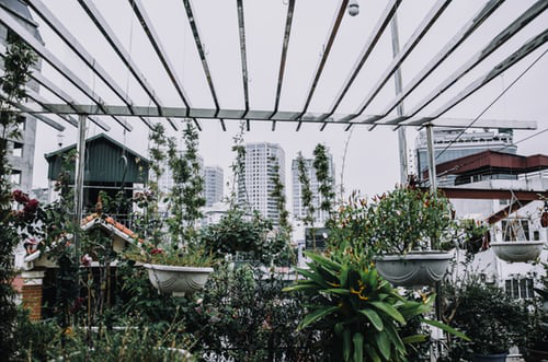 Urban Gardening Alternative gegen das unpersönliche Leben in der Großstadt
