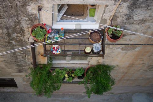 Urban Gardening Töpfe mit grünen Pflanzen auf dem kleinen Balkon