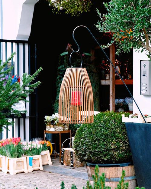 Urban Gardening etwas mehr Natur im eigenen Garten