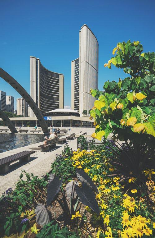 Urban Gardening grüne Flächen inmitten der Großstadt