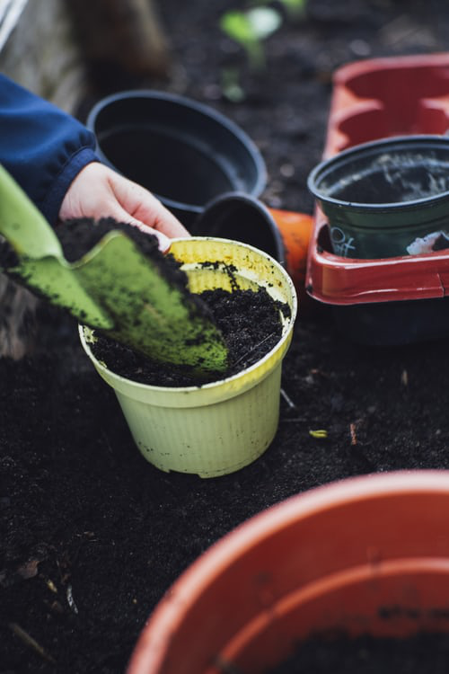 Urban Gardening vernachlässigte Flächen gemeinschaftlich bearbeiten Möglichkeit für neue Kontakte