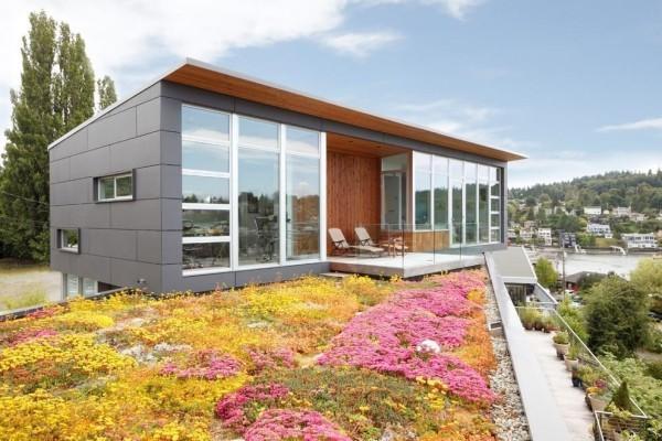 Viele Blumen - Idee für moderne Häuser